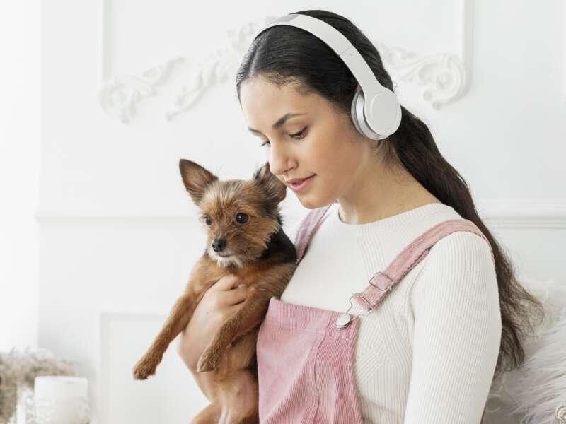 Medium shot girl holding dog